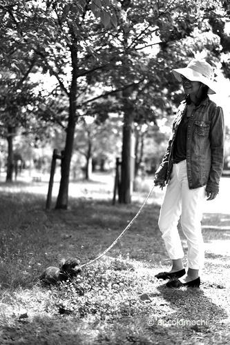 DSC_7917_951芦屋公園.jpg