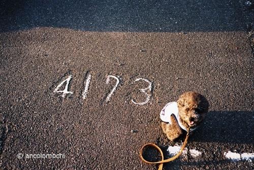 FL000036駐車番号.jpg